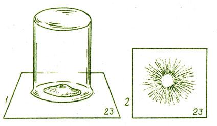 Рис. 16. Получение спорового порошка: 1 - шляпка под колпаком; 2 - препарат спор на листе бумаги после экспозиции.