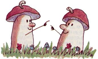 червивые грибы фото